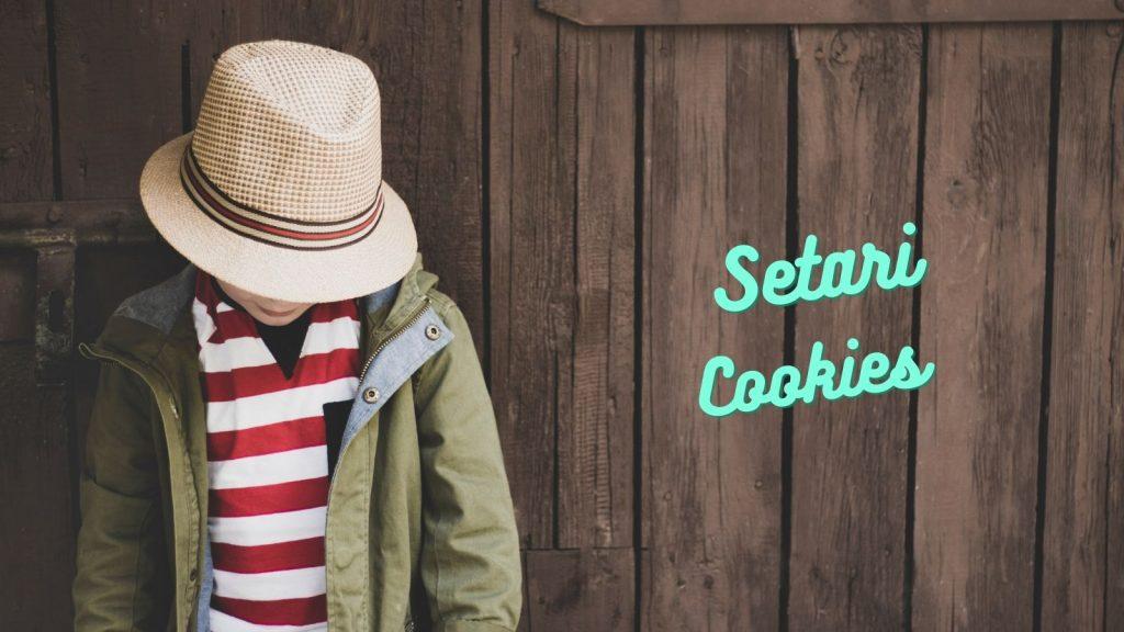 setari cookies